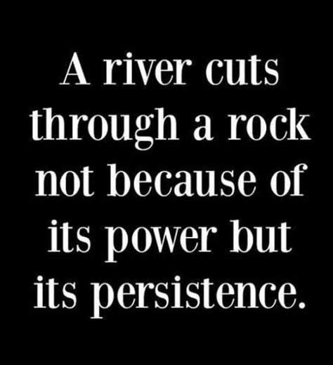 A river cuts through a rock not because of its power but its persistence.