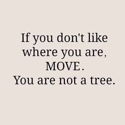 If you don't like where you are, move. You are not a tree.