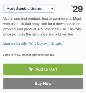 Audiojungle Music Standard License